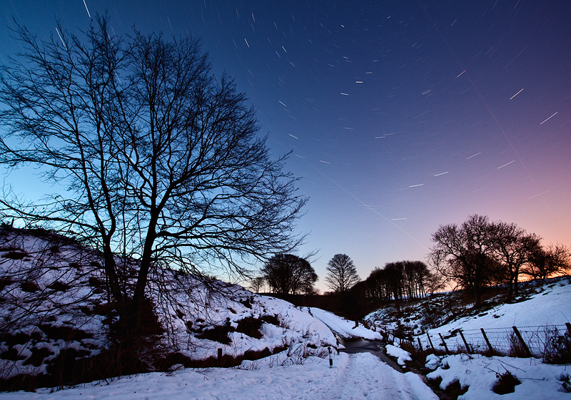 Stargazing at Hamsterley Forest