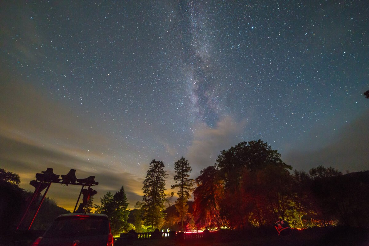 Stargazing at Grizedale