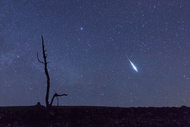 Lyrids Meteor Shower with Dr Fred