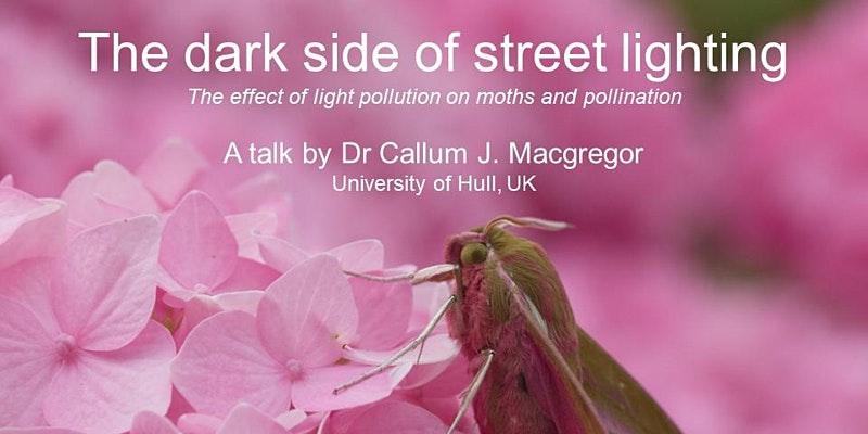 The Dark Side of Street Lighting