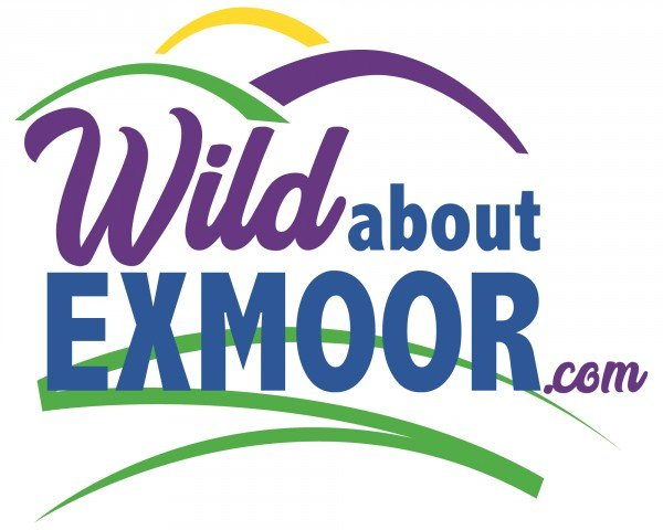 Wild About Exmoor