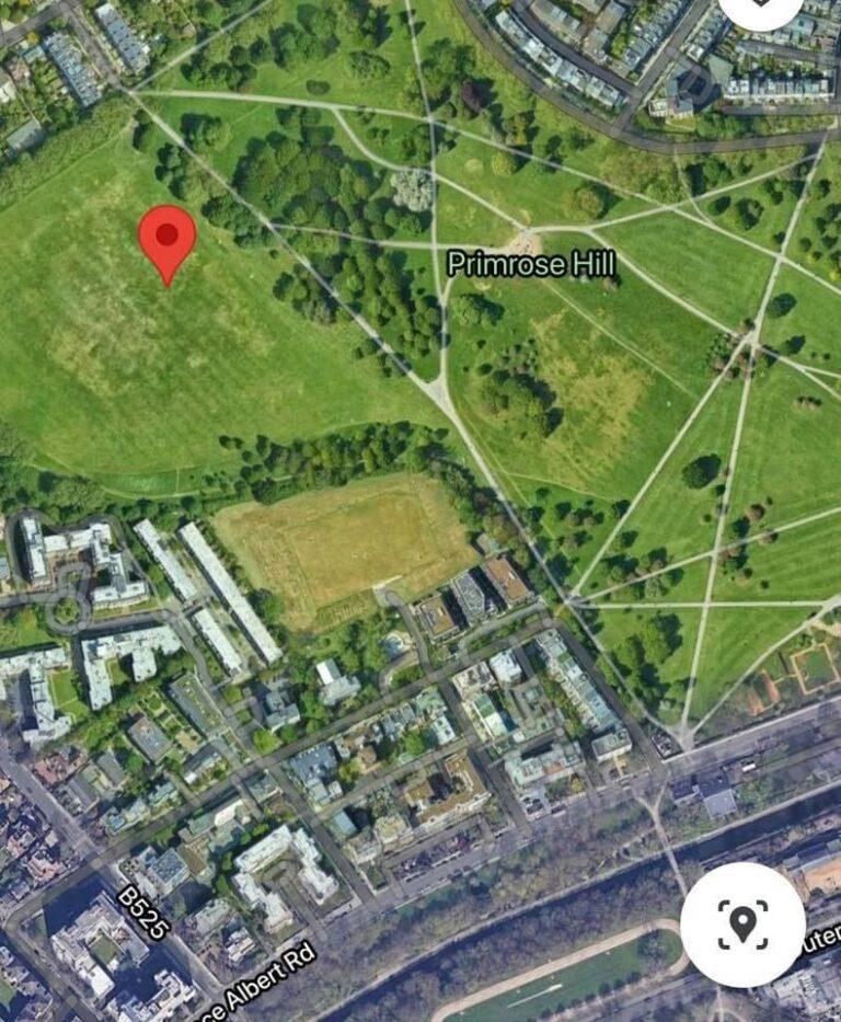 Primrose Hill Perseids observing location