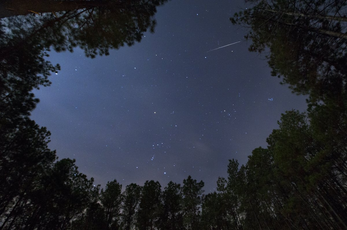 How to see the Orionids Meteor Shower